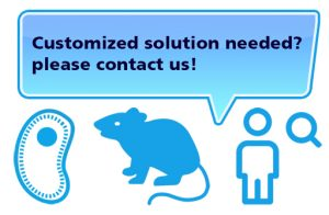medres – Customized solutions